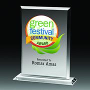 "4 Color Process Billboard Award - 7"""