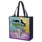 "13"" x 13"" Full Color Glossy Lamination Grocery Shopping Tote Bags"