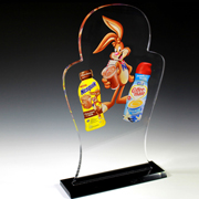 Custom Acrylic Award - 17