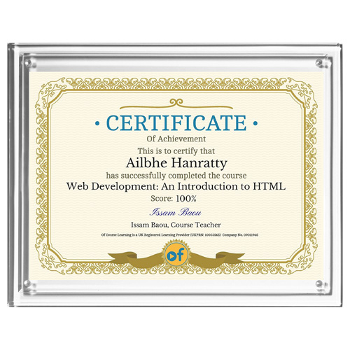 """Magnetic Certificate Holder - Clear on Clear - 8 1/2"""" x 11"""" Insert"""